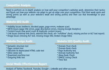 Comprehensive site audit by web agency Webcorelab